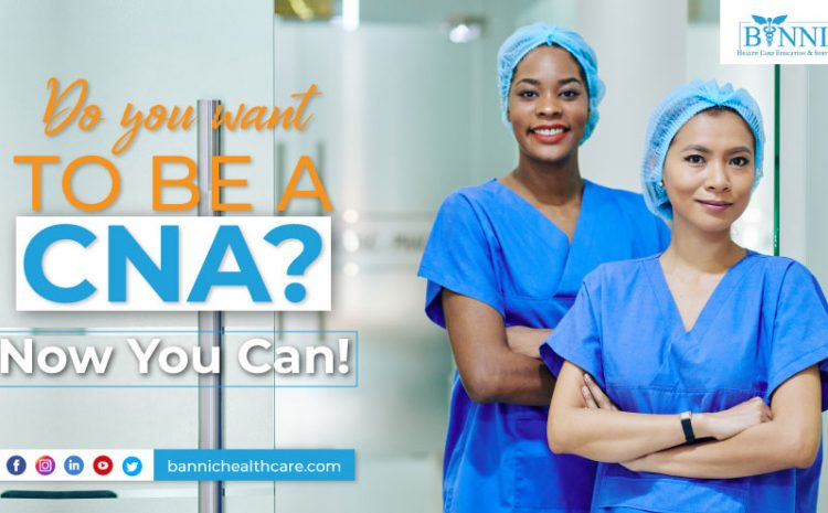 You Want to Be a CNA